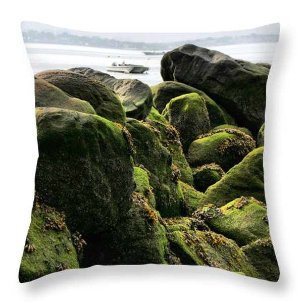 Stepping Stones Park Throw Pillow by JC Findley