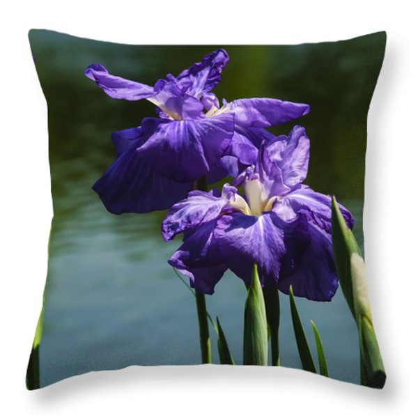 Still Beautiful Throw Pillow by Penny Lisowski