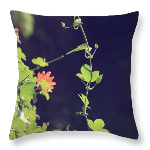 Still Holding On Throw Pillow by Laurie Search