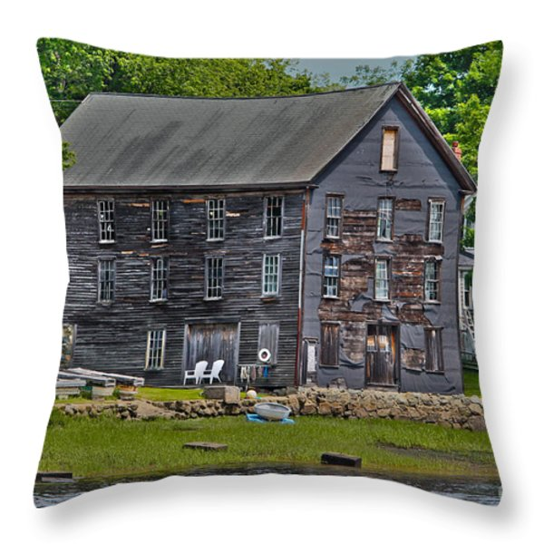 Still standing 1 Throw Pillow by Claudia Mottram