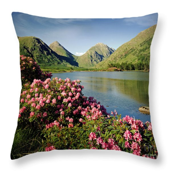 Stillness Of The Mountain Throw Pillow by Edmund Nagele