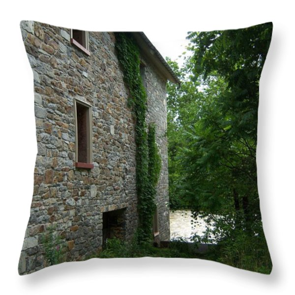 Stone and Ivy Throw Pillow by S G