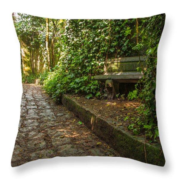 Stone Path Throw Pillow by Jess Kraft