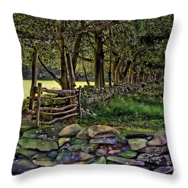 Stone Walled Throw Pillow by Tom Prendergast