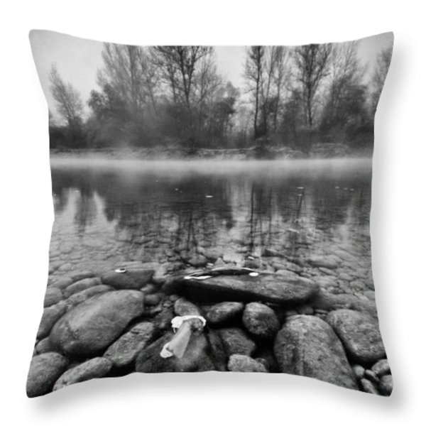 Stones and Trees Throw Pillow by Davorin Mance