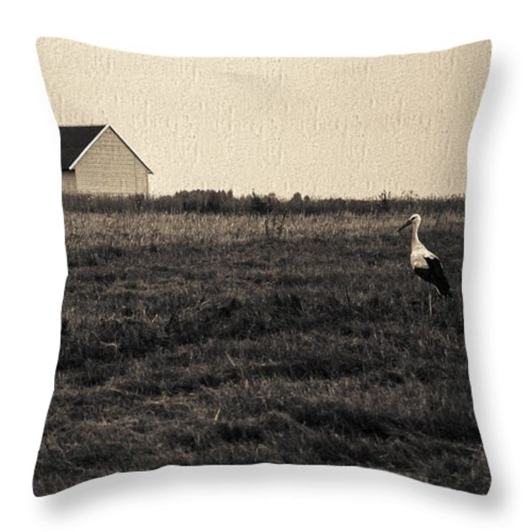 Stork's Tale Throw Pillow by Yevgeni Kacnelson