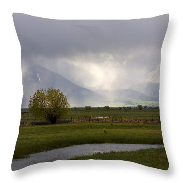 Storm Break Throw Pillow by Mike  Dawson