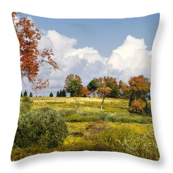 Storm Clouds Over Country Landscape Throw Pillow by Christina Rollo