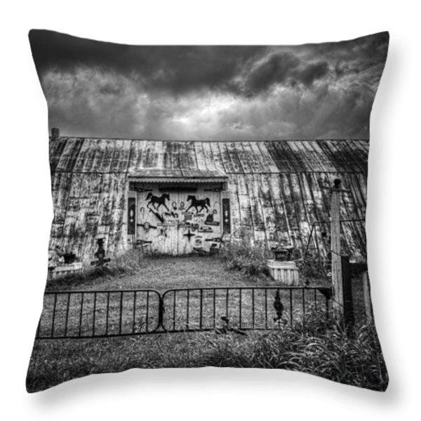 Storm Coming In On The Farm Throw Pillow by Thomas Young