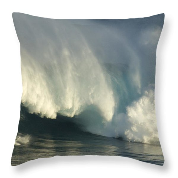 Storm Front Throw Pillow by Bob Christopher