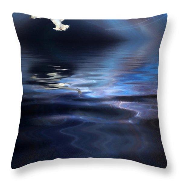Storm Throw Pillow by John Edwards