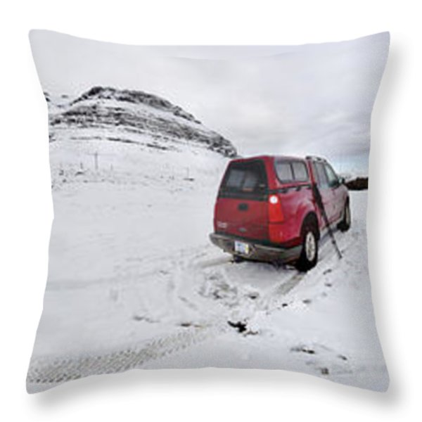 Storm Rider Throw Pillow by Evelina Kremsdorf