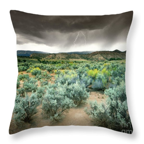 Storms Never Last Throw Pillow by Edmund Nagele