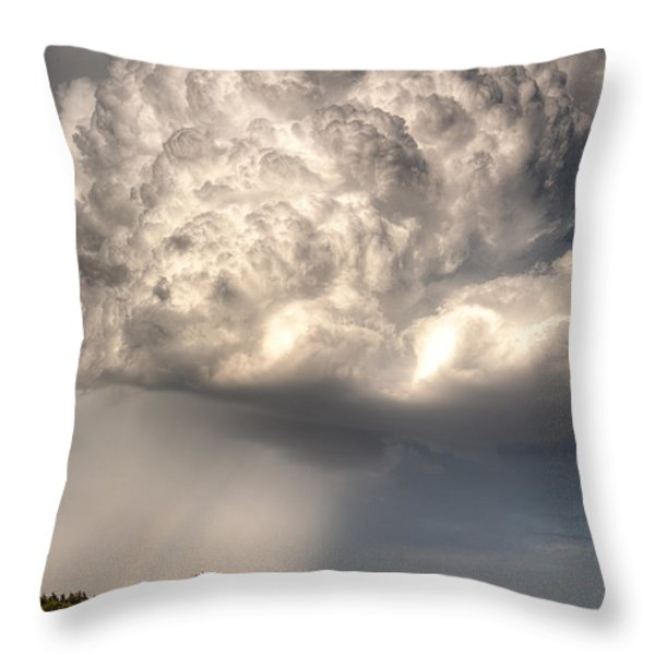 Stormy Homestead Barn Throw Pillow by Thomas Zimmerman