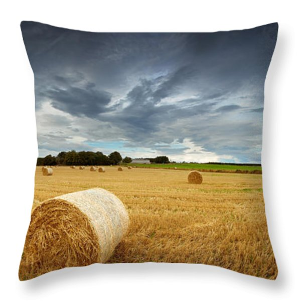Straw bales pano Throw Pillow by Jane Rix