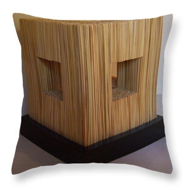 Straw Cube Throw Pillow by Daniel P Cronin