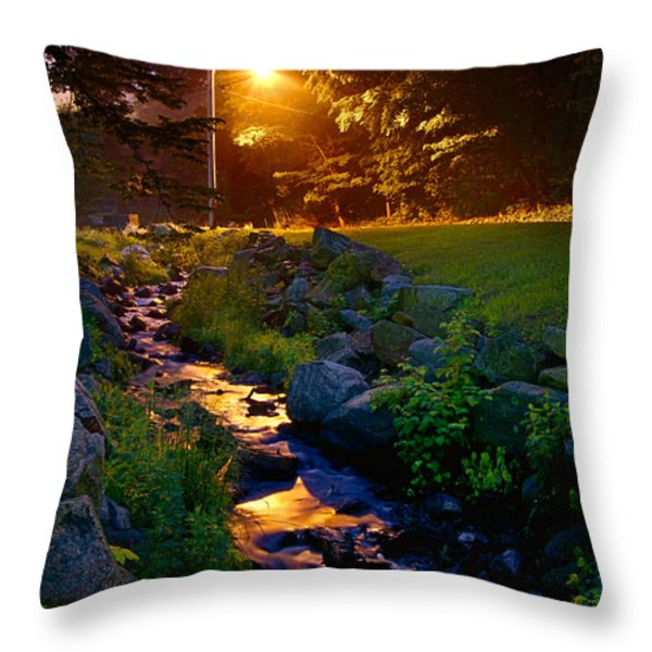Stream By Streetlight Throw Pillow by Mark Miller