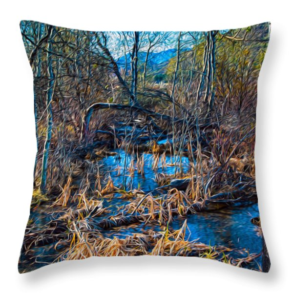 Streaming Beauty Throw Pillow by Omaste Witkowski