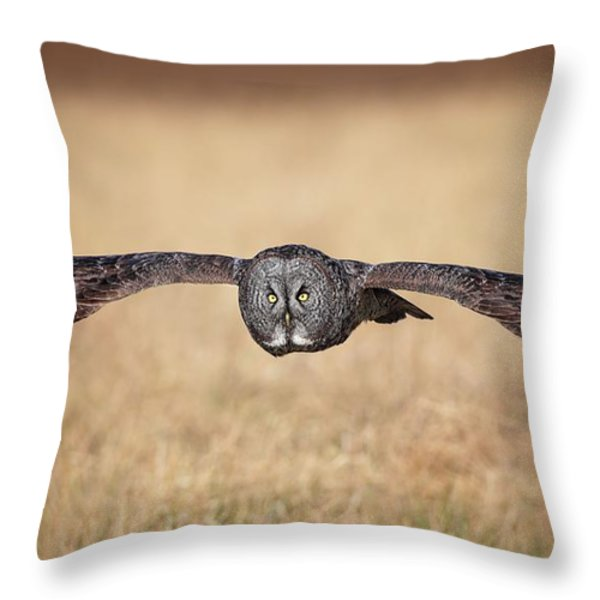 Stretched Out Throw Pillow by Daniel Behm