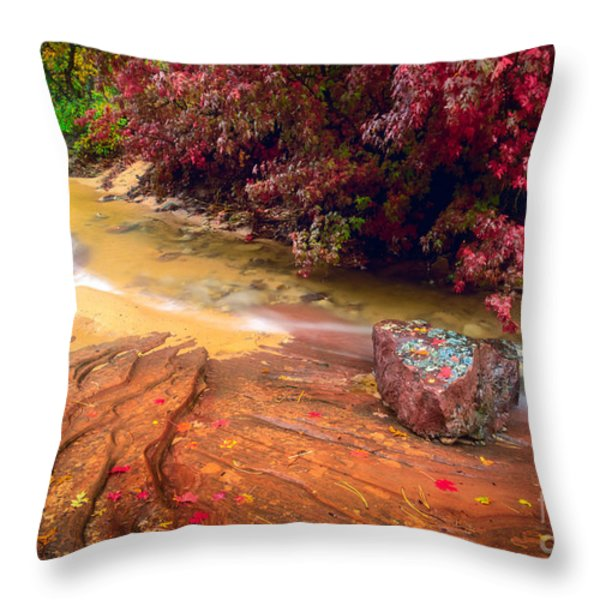 Striated Creek Throw Pillow by Inge Johnsson