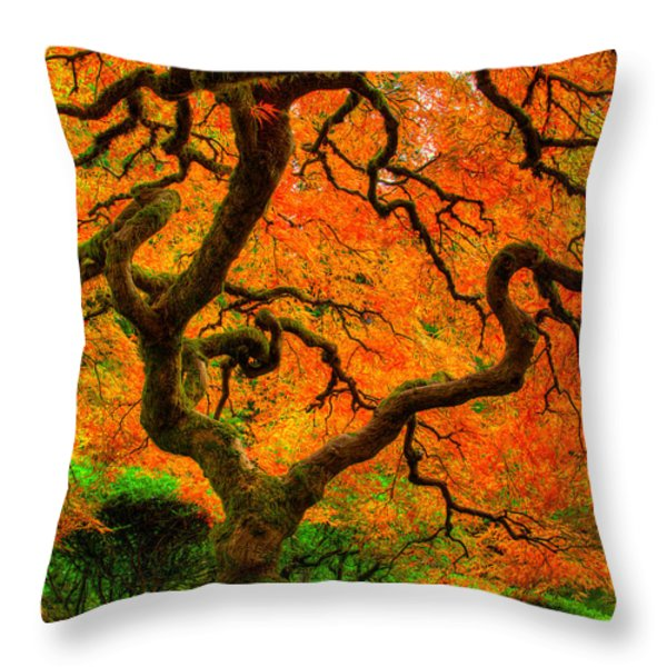 Structured Beauty Throw Pillow by Dustin  LeFevre