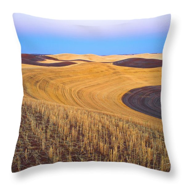 Stubble Throw Pillow by Don Hall