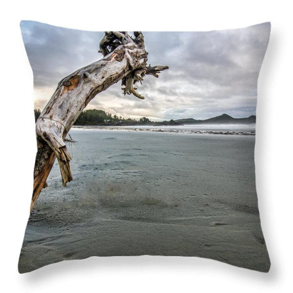 Stuck Log Throw Pillow by James Wheeler
