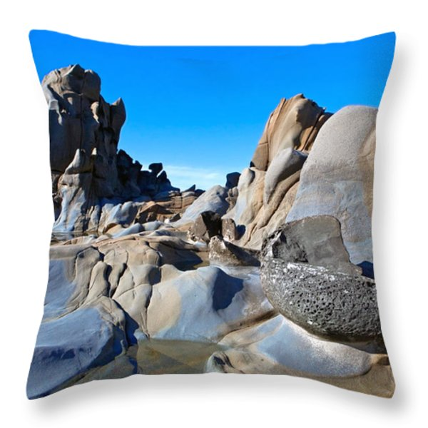 Stump Beach Throw Pillow by Daniel Furon