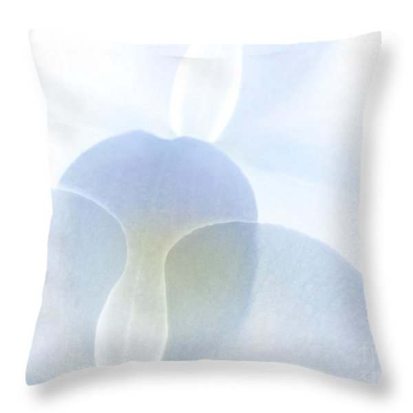 Subtle Symphony Throw Pillow by Michelle Wiarda
