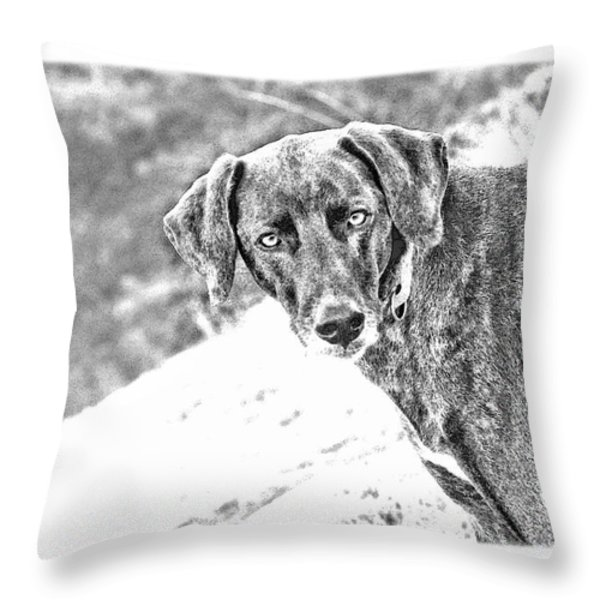 Such a Pretty Girl Throw Pillow by Peggy Collins