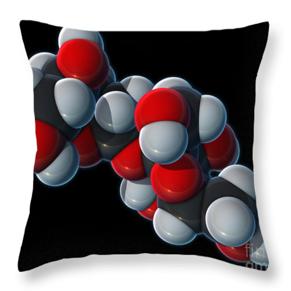 Sucrose Molecular Model Throw Pillow by Evan Oto