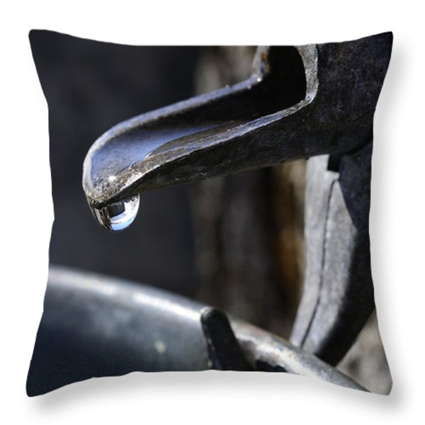 Sugaring Throw Pillow by Thomas R Fletcher