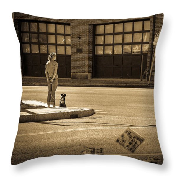 Summer Afternoon Throw Pillow by Bob Orsillo