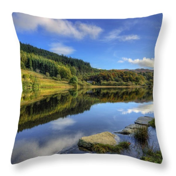 Summer At The Lake Throw Pillow by Ian Mitchell