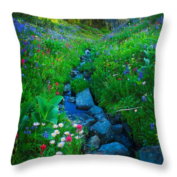 Summer Creek Throw Pillow by Inge Johnsson