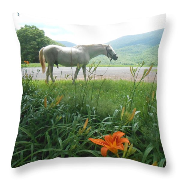Summer Day Memories with The Paso Fino Stallion Throw Pillow by Patricia Keller