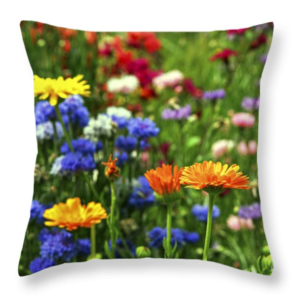 Summer flowers Throw Pillow by Elena Elisseeva