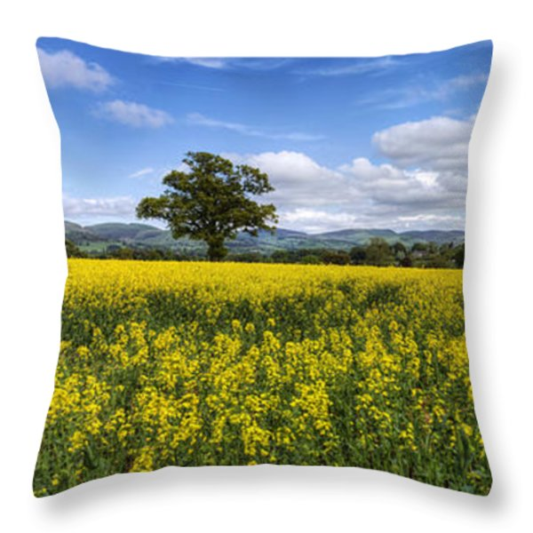 Summer Meadow Throw Pillow by Ian Mitchell