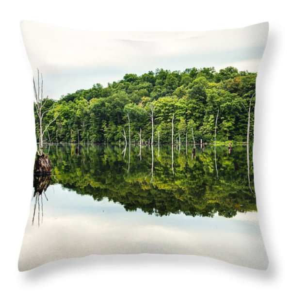 Summer Morning on Monksville Reservoir 2 Throw Pillow by Gary Heller