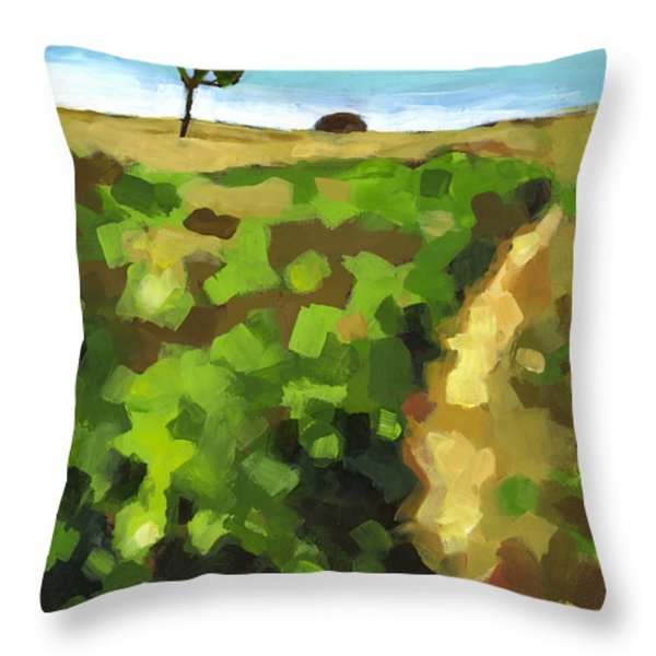 Summer Path Throw Pillow by Douglas Simonson