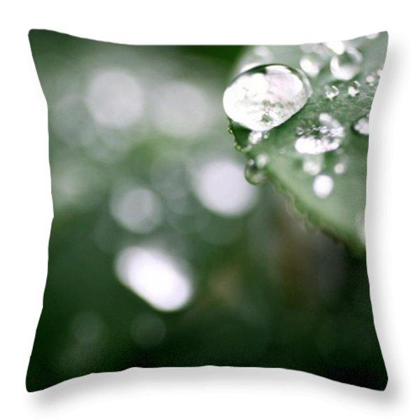 Summer Rain Throw Pillow by AR Annahita