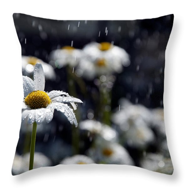 Summer Showers Haiku Throw Pillow by Lisa Knechtel