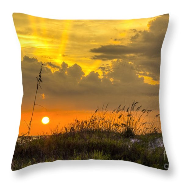 Summer Sun Throw Pillow by Marvin Spates