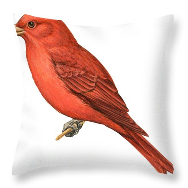 Summer Tanager  Throw Pillow by Anonymous
