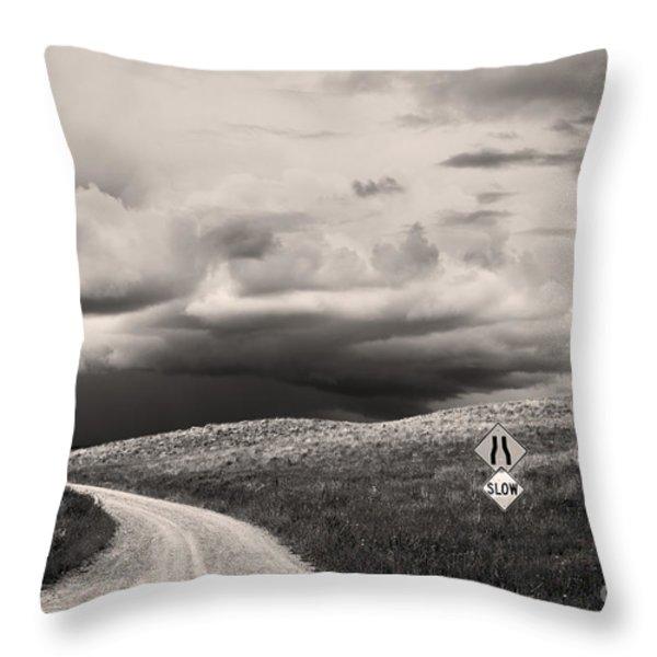 Summer Tempest Throw Pillow by Sandi Mikuse
