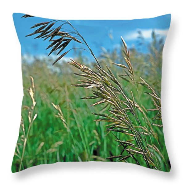 Summer Throw Pillow by Terry Reynoldson