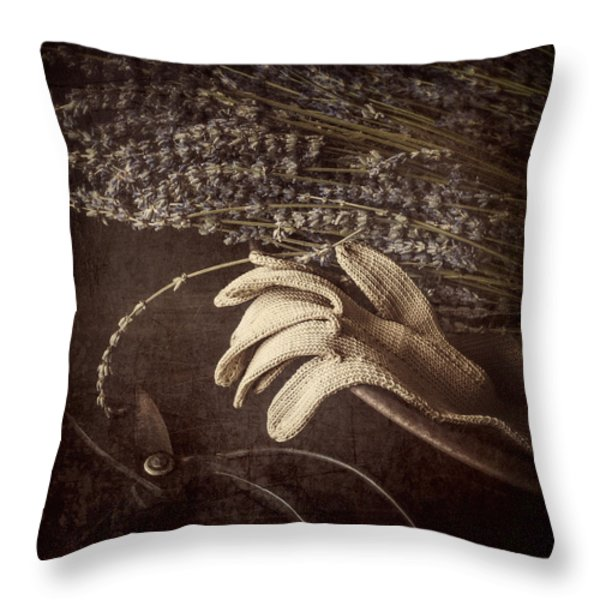 Summer's Grace Throw Pillow by Amy Weiss