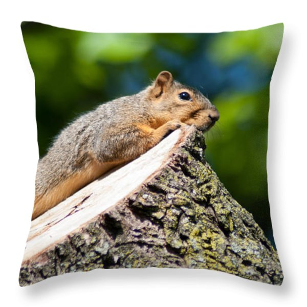 Sun Basking  Throw Pillow by Optical Playground By MP Ray