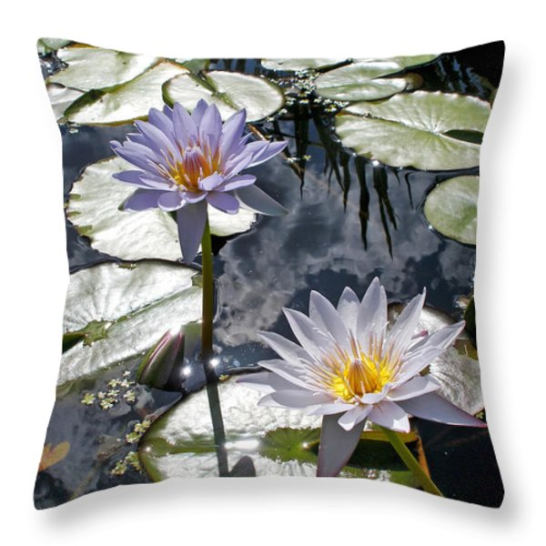 Sun-drenched Lily Pond Throw Pillow by Kaye Menner