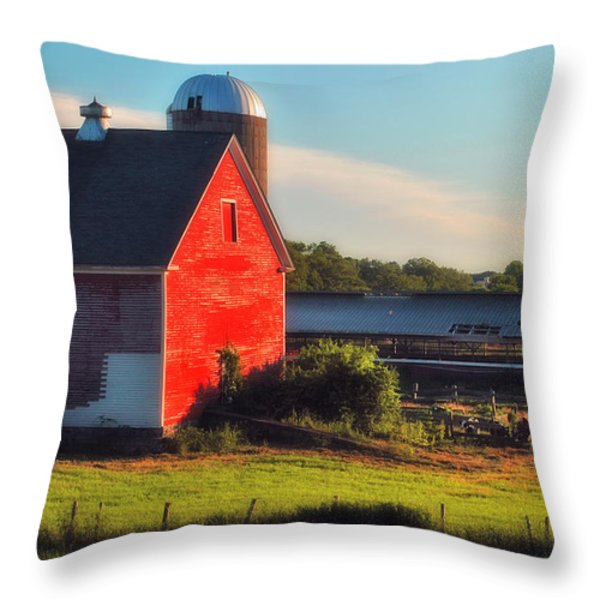 Sun Kissed Throw Pillow by Joann Vitali